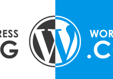 WordPress.Org Vs WordPress.com – Infographics