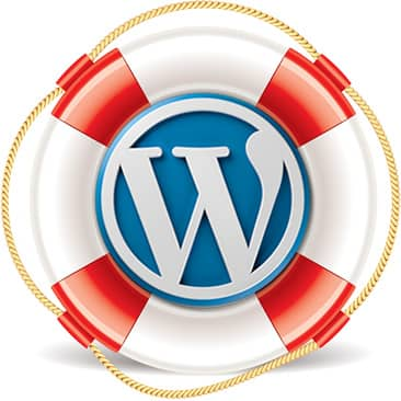 Wordpress Updates and Support