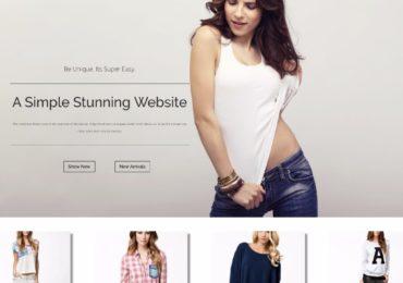 Online Store Using WordPress