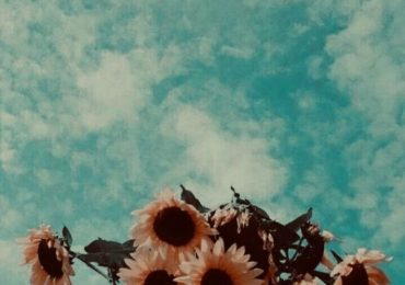 aesthetic vintage wallpaper for iphone